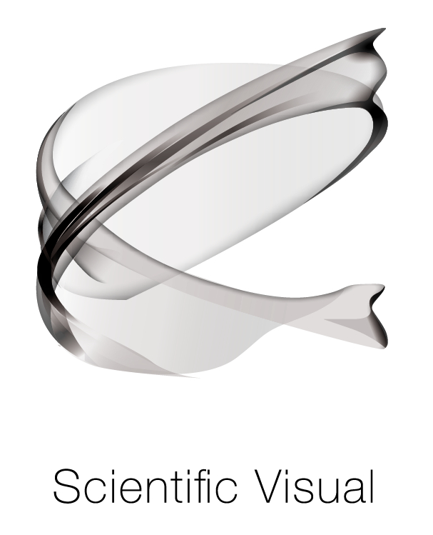 SCIENTIFICAL VISUAL SA